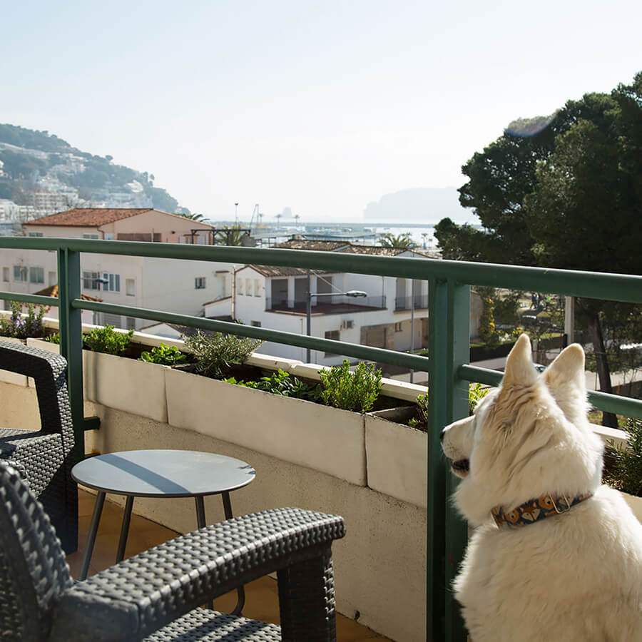 apartment rental in the Costa Brava